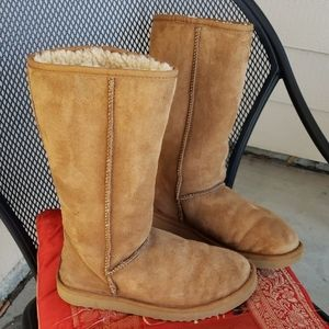 Women's Uggs classic tall size 7